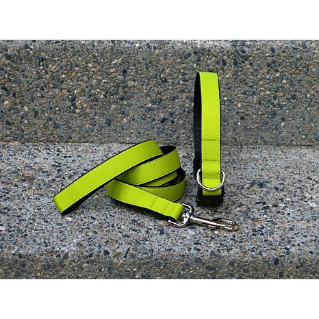 Isabella Cane Chartreuse Collar-Leash Set