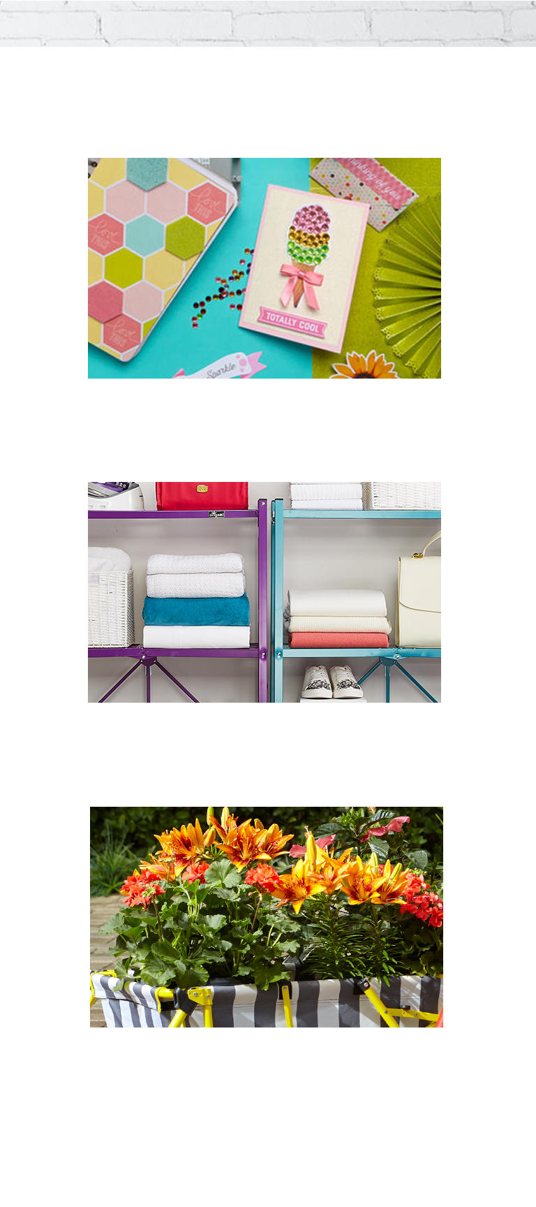 A picture of craft goods, a picture of organizational shelves, and a picture of planted flowers.