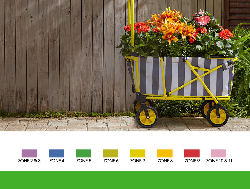 a wagon holds a plethora of blooming flowers.