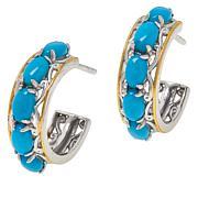 Gems by Michael Gemstone Hoop Earrings