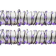 Gerson Set of 2 10' Purple String Lights