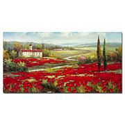 Rio 'Field of Poppies' Canvas Art Print