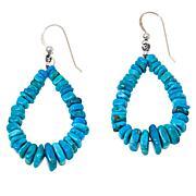 Jay King Sterling Silver Royal Blue Turquoise Bead Dangle Earrings