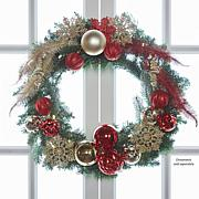 JOY Pre-Lit Forever Fragrant® Holiday Scented Wreath