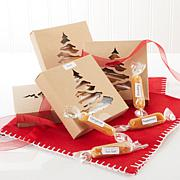 JulieAnn Caramels 1 lb. Mixed Caramels with 4 Holiday Boxes