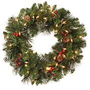 """National Tree 20"""" Crestwood Spruce Wreath with 35 Clear Lights"""