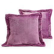 Soft & Cozy Plush Decorative Pillow Pair