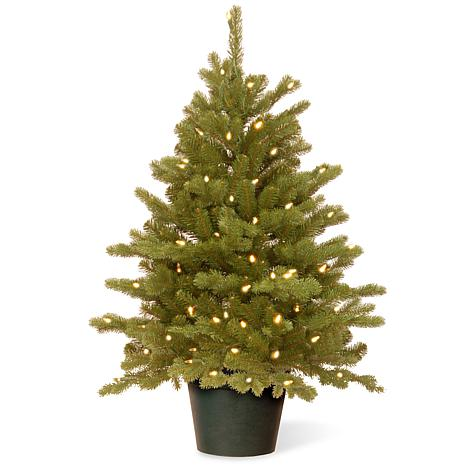 3' Feel Real® Hampton Spruce Small Pre-Lit Tree in Growers Pot