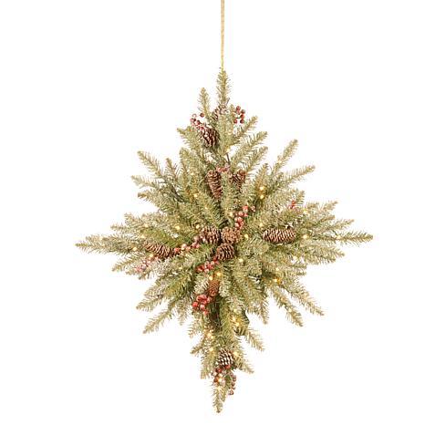 """32"""" Snowy Dunhill® Fir Bethlehem Star with LED Lights"""