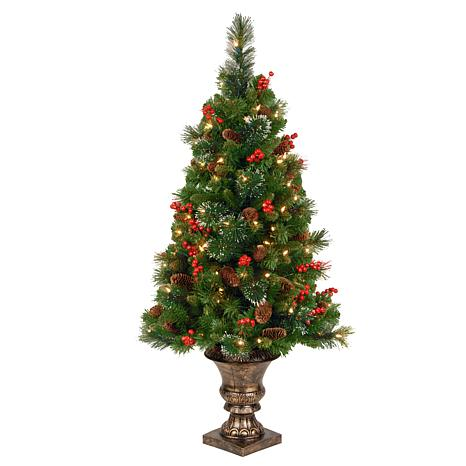 4 ft. Crestwood Spruce Entrance Tree with Clear Lights