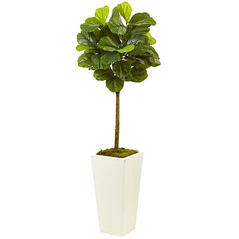 4.5 Ft. Fiddle Leaf Fig Tree in White Planter Real Touch