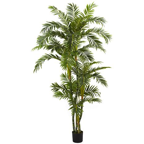 6 Ft. Curvy Parlor Palm Silk Tree