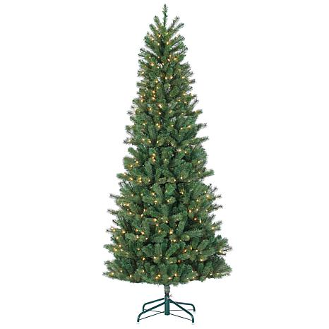 7-1/2' Natural-Cut Slim Montgomery Pine Tree - 550 Clear Lights