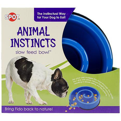 Animal Instincts Slow-Feed Bowl