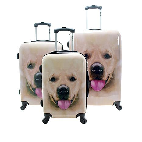 Chariot Labrador Hardside 3-piece Luggage Set