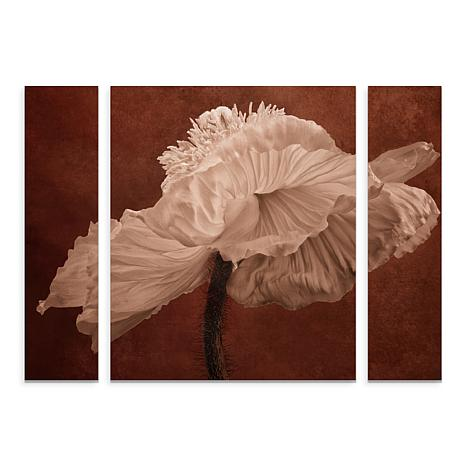 "Cora Niele ""White Poppy"" Multi-Panel Art - 30"" x 41"""