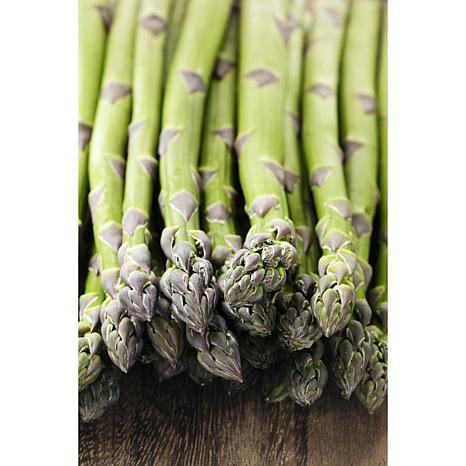 GMO Free Asparagus Mary Washington Set of 12 Roots