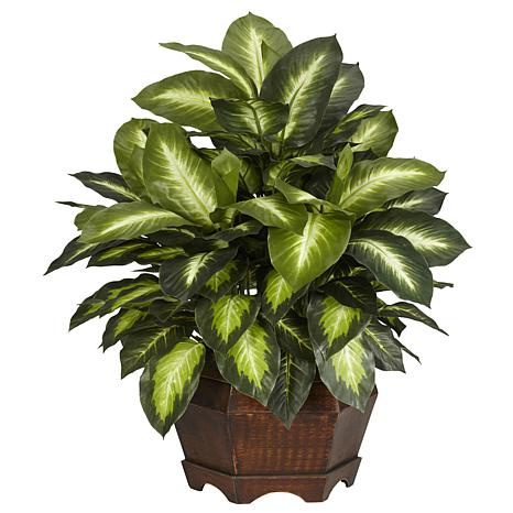 Golden Dieffenbachia Silk Plant