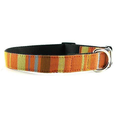 Isabella Cane Abbington Dog Collar - Orange Small