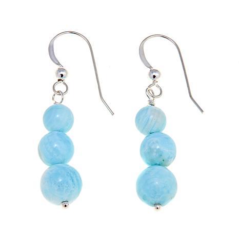 Jay King Graduated Blue Ocean Stone Bead Earrings