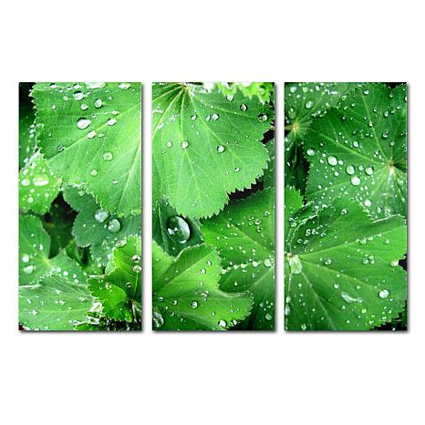 Kathie McCurdy 'Water Droplets' Art Collection