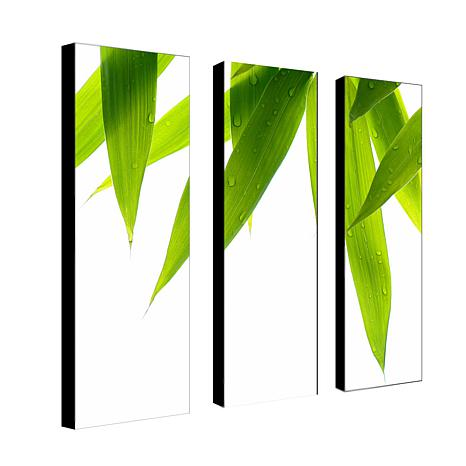 Philippe Sainte-Laudy 'Life is Green' Canvas Art