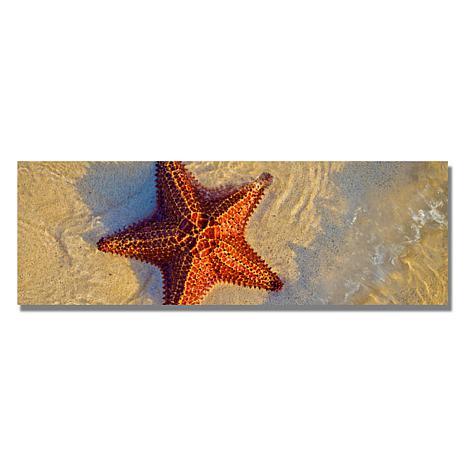 "Preston ""Starfish"" Canvas Art - 12"" x 32"""