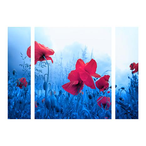 "Sainte-Laudy ""Jam for Poppies"" Panel Art - 30"" x 41"""