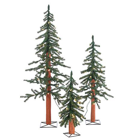 Sterling 2', 3' and 4' Lighted Alpine Trees - Set of 3