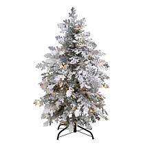 4' Flocked Montana Down Swept Spruce Artificial Christmas Tree with...
