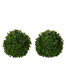 """As Is"" Improvements Set of 2 Boxwood Spheres"