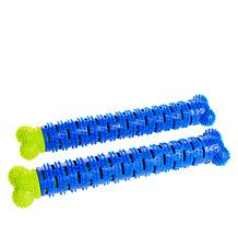 ChewBrush Chew Toy for Dogs 2-pack