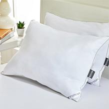 Concierge Collection CoolMax® 2-pack Pillows