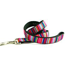 Isabella Cane ZZ-Stripe-5 Dog Leash