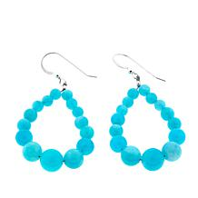 Jay King Peruvian Amazonite Bead Drop Sterling Silver Earrings