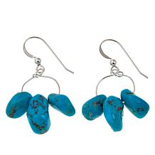 Jay King Seven Peak Turquoise Nugget Drop Earrings