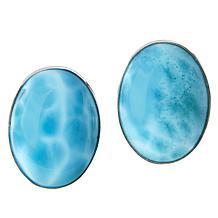 Jay King Sterling Silver Larimar Oval Earrings