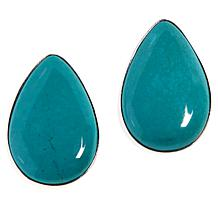 Jay King Sterling Silver Seven Peaks Turquoise Pear Shape Earrings