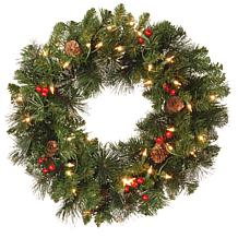 "National Tree 20"" Crestwood Spruce Wreath with 35 Clear Lights"