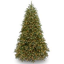 Winter Lane 9'Jersey Fraser Fir Tree w/Lights