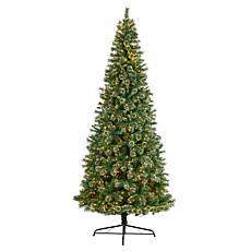 10' Wisconsin Slim Snow Tip Pine  Christmas Tree