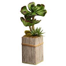 """11"""" Garden Accents Artificial Succulent Plant"""