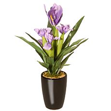 "17"" Artificial Potted Iris Plant"