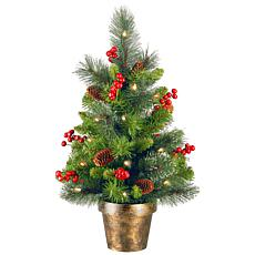 2 ft. Crestwood Spruce Tree with Battery Operated Soft White LED Li...