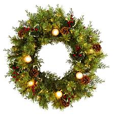 24 in. Christmas Artificial Wreath with 50 White Warm Lights, 7 Glo...