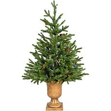 3' Noble Fir Tree Metallic Urn Base Battery-Operated Multi-Colored