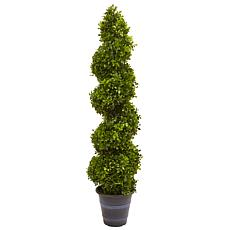 4 Ft. Boxwood Spiral Topiary Tree with Planter