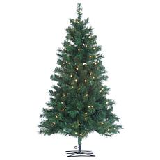 4' Pre-Lit Colorado Spruce Tree - 150 Clear Lights