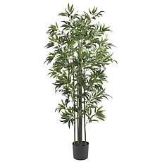 6' Bamboo Silk Tree Green Trunks