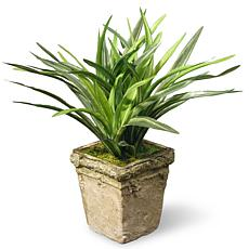 "9"" Artificial Dracaena Plant"